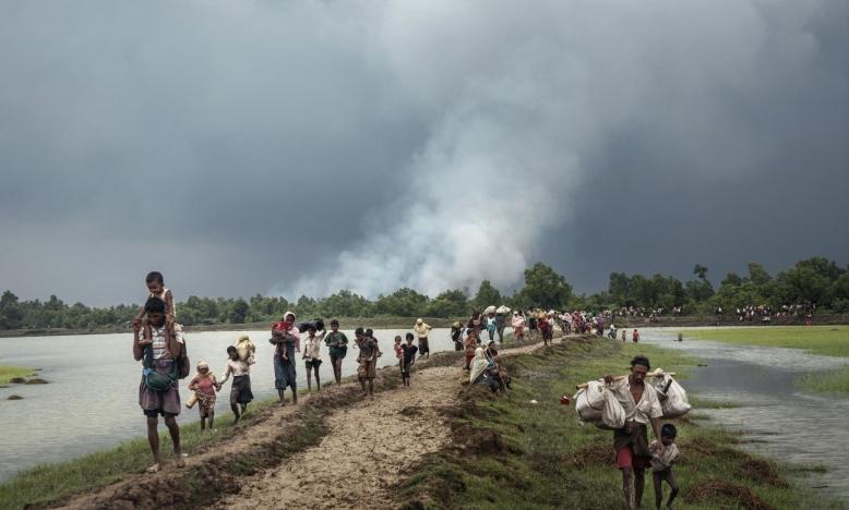 Rohingya refugees stream into Bangladesh © Adam Dean/Panos