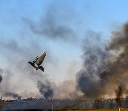© BULENT KILIC/AFP via Getty Images